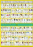 S-49 English Spelling Chart A0 (Large Wallchart for Classes)